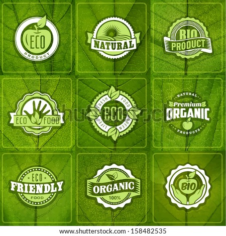 Set of eco green labels of healthy organic natural fresh farm food on leaf textures - stock vector