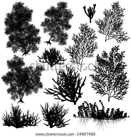 Set of editable vector sea coral silhouettes
