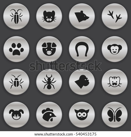 Set Of 16 Editable Zoology Icons. Includes Symbols Such As Cockroach, Puppy, Feline And More. Can Be Used For Web, Mobile, UI And Infographic Design.