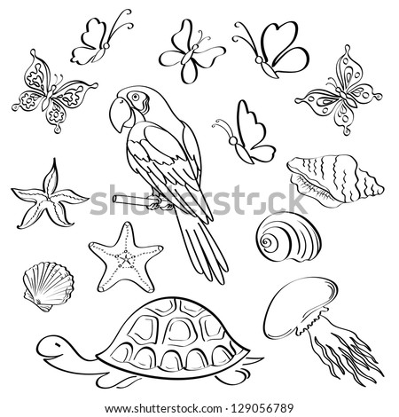 Set of exotic animals and insects, black contour on white background. Vector - stock vector