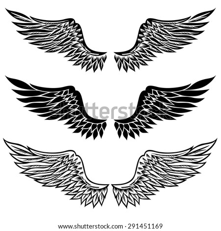 Set of fantasy stylized wings isolated on white  - stock vector
