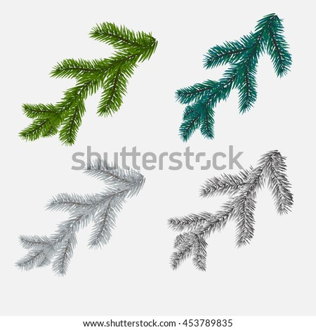 Set of fir, pine branches isolated on white background. Vector illustration - stock vector