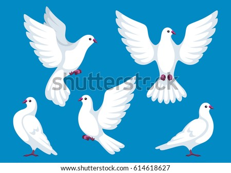 Set Five White Doves Beautiful Pigeons Stock Vector 614618627