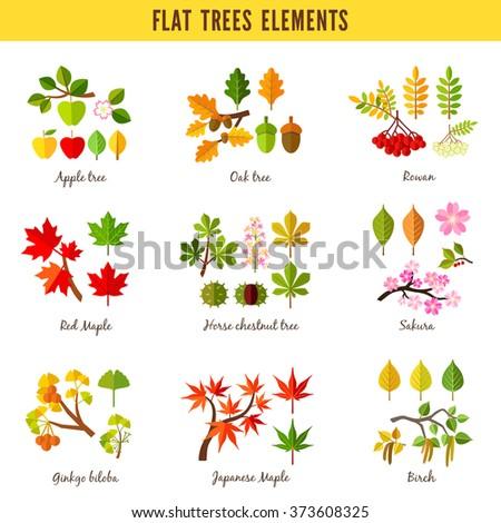 Set of flat trees elements. Apple tree, Oak tree, Rowan, Red maple, Horse chestnut tree, Sakura, Ginkgo biloba, Japanese maple, Birch. Vector illustration - stock vector
