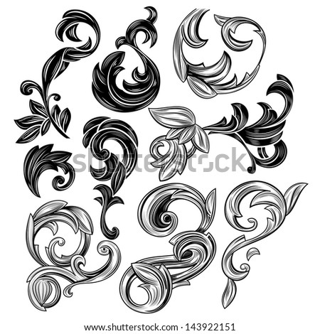 Set of floral design elements isolated on white