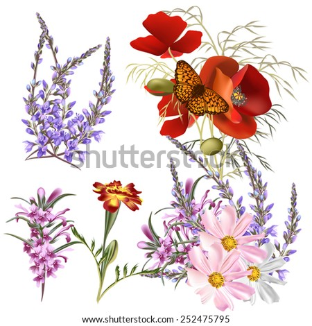 Set of floral designs in watercolor style with flowers - stock vector