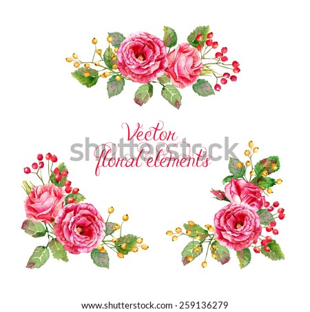 Set of floral elements for design. Vector illustration of red roses. Watercolor flowers.  - stock vector