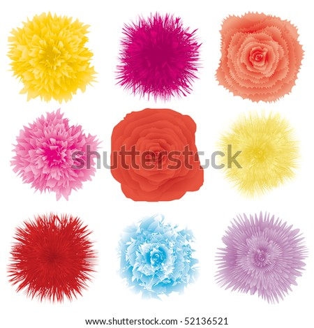 Set of flower design element, part 2, vector illustration - stock vector