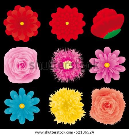 Set of flower design element, part 4, vector illustration - stock vector