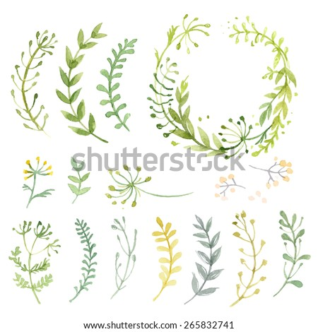 Set of flowers painted in watercolor on white paper. Sketch of flowers and herbs. Wreath, garland of flowers. Vector watercolor - stock vector