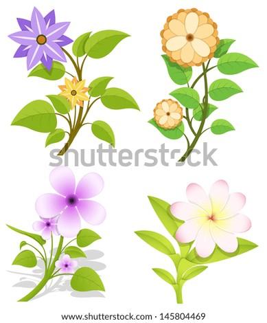 Set of Flowers Vector - stock vector