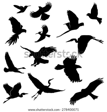 Set of Flying Birds Silhouettes. Vector Image - stock vector