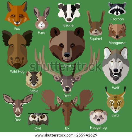 Set of forest animals faces isolated icons. Flat style design. Vector illustration. - stock vector