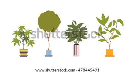Growing lemon tree life cycle plant stock vector 566200000 for Green floor plant