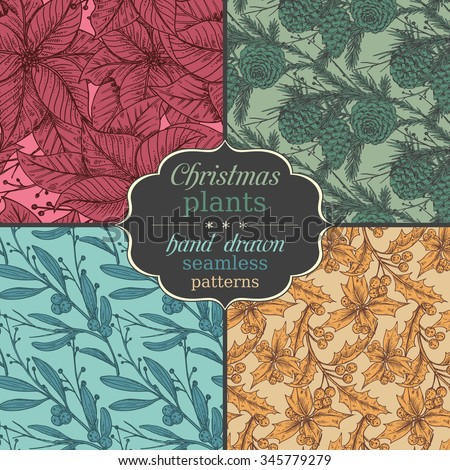Set of four Vector seamless patterns with hand drawn winter plants - poinsettia, mistletoe, fir-cone; holly.Christmas and New Year sketch background. Can be used for  textile, paper, scrapbooking. - stock vector
