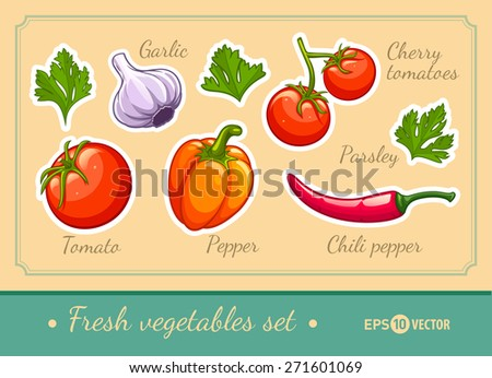 Set of fresh organic vegetables cherry tomato pepper garlic chili and parsley. Eps10 vector illustration. Isolated on white background - stock vector