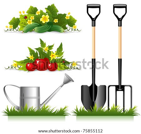 Set of gardening related items and vegetables. Vector. - stock vector