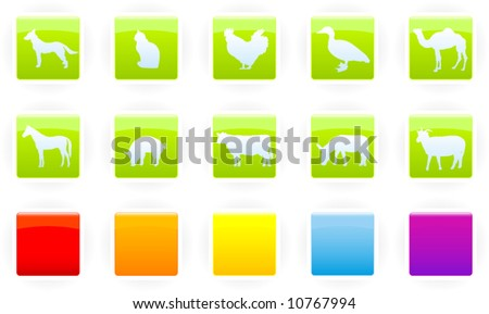 Set of glossy square icons with farm animals with several additional backgrounds - stock vector