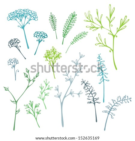 Set of grass silhouettes. Various grass and floral elements for design. - stock vector