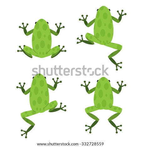 Set of green frog  in flat style with pattern - stock vector
