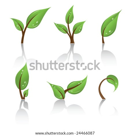 Set of green leafs - stock vector