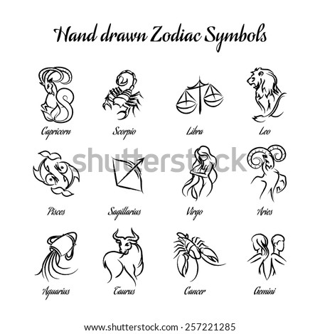 Set of hand drawn astrological zodiac symbols or horoscope signs. Lion and cancer, fish and pisces, scorpio and aquarius, aries and virgo and gemini. Vector illustration - stock vector
