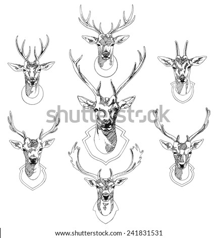 Set of hand drawn deer heads trophies. Sketch drawing illustration vector. - stock vector