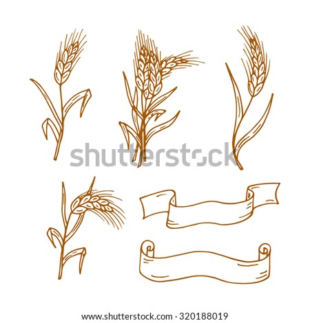 Set of Hand drawn Doodles Wheat ears and banners - stock vector