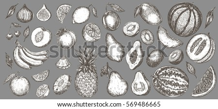 Set of hand drawn exotic fruits isolated on background. Detailed engraving retro style - elements for menu design, recipe illustration, sticker. Guava, banana, melon, fig, papaya and others.