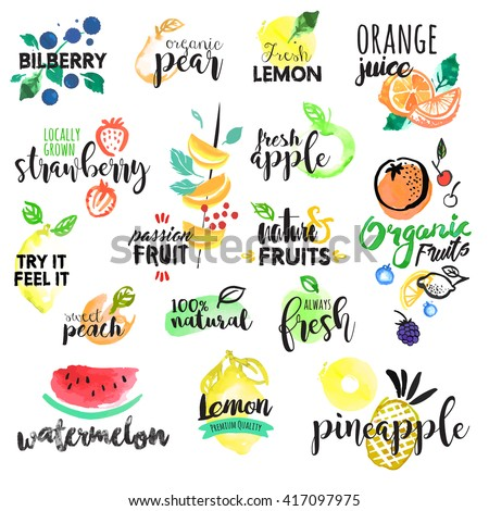 Set of hand drawn watercolor labels and stickers of fruit. Vector illustrations for graphic and web design, for food and drink, restaurant and bar, menu, fruit market, organic fruits. - stock vector
