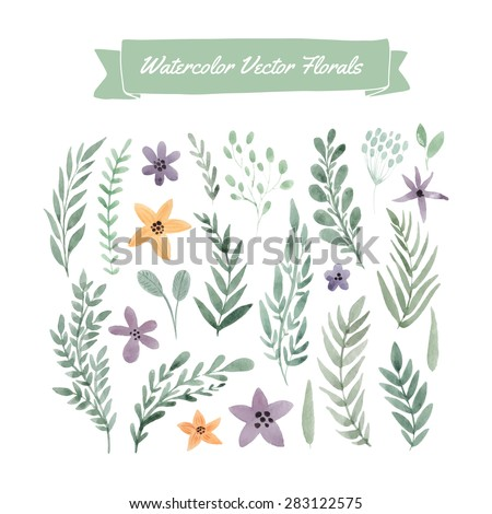 Set of handpainted watercolor vector flowers and leaves.Design element for summer wedding, spring congratulation card. Perfect floral elements for save the date card. Unique artwork for your design.   - stock vector