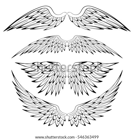 Set of heraldic bird angel wings isolated on white background for religious, tattoo or heraldry design. Vector illustration.