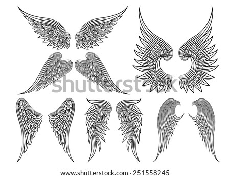 Set of heraldic wings or angel wings drawn black lines. Vector illustration - stock vector