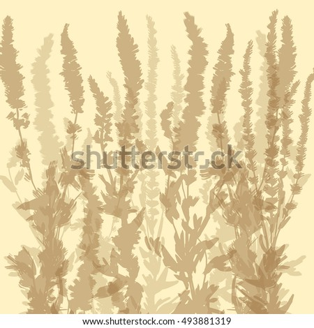 Set of Herbs and Wild Flowers. Botany. Vintage flowers. Vector.