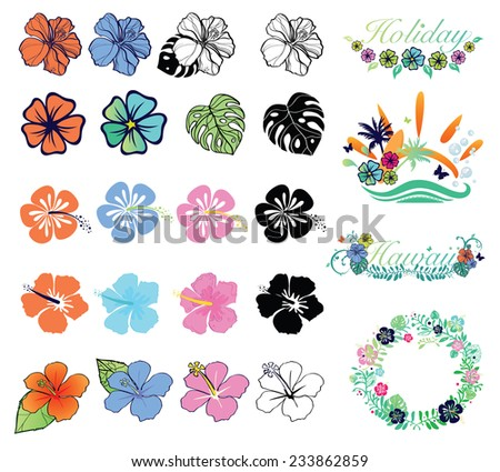Set of hibiscuses and designs on summer theme - stock vector