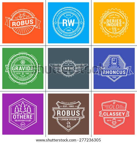 Set of Hipster Vintage Labels, Logotypes, Badges. Thin Line Design Template - stock vector