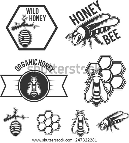 Set of Honey and Bee badges and elements. - stock vector