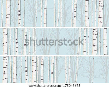 Set of horizontal abstract banners of birch trunks forest. - stock vector