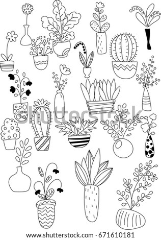 Set House Flowers Different Pots Vases Stock Photo (Photo, Vector ...