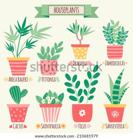 Set of houseplants in pots. - stock vector