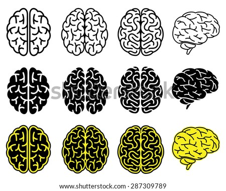 Set of human brains. Vector illustration. - stock vector