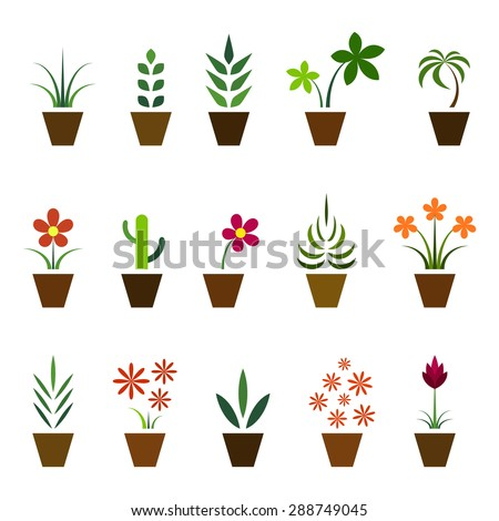 Set of indoor plants in pots, colorful isolated on white background, vector illustration.