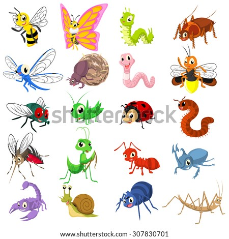 Set of Insect Cartoon Character Flat Design Vector Illustration