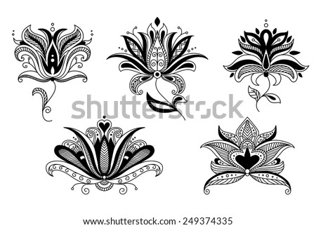Set of intricate decorative paisley vector calligraphic floral elements for stylish design - stock vector