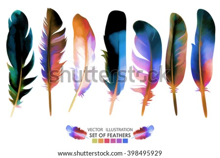 Set of isolated colorful feathers. Vector, EPS10