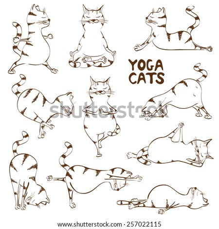 Set of isolated funny sketch cats icons doing yoga position - stock vector