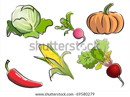 set of isolated vegetables part 3.  illustration in aquarelle style. - stock vector