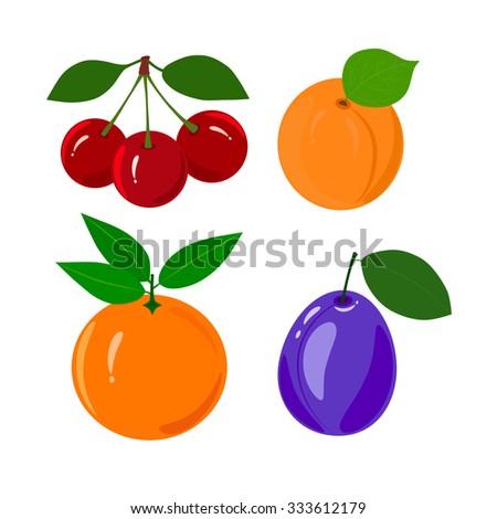 Set of juicy ripe fruit isolated on a white background. Set of juicy ripe fruit isolated on a white background - orange, cherry, apricot, plum. - stock vector