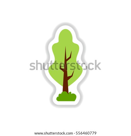 Bonsai Silhouette Stock Photos Royalty Free Images