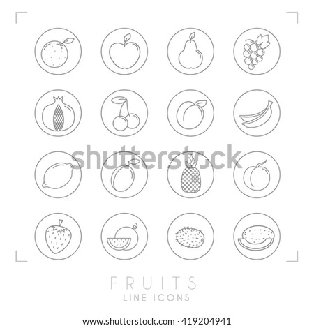 Set of line Fruit icons in outline circles. Flat style. Orange, apple, pear, grape, pomegranate, cherry, apricot, banana, lemon, plum, pineapple, peach, watermelon, kiwi, melon, strawberry. - stock vector